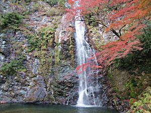 紅葉の箕面の滝