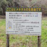 ヒメボタル飼育地の看板拡大