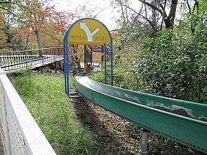 冒険の森滑り台