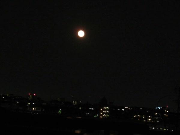 ストロベリームーンの翌日の月