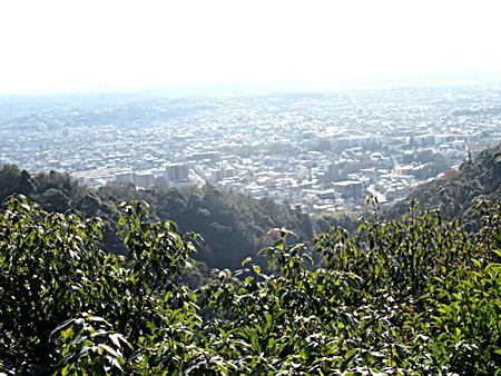 展望台からの景観