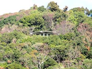 反対側の山から見た展望台
